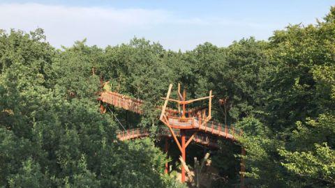 Baumkronenpfad Ivenack